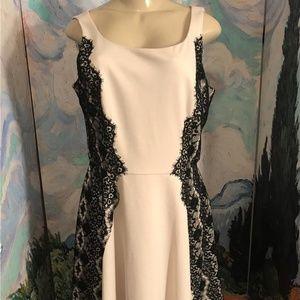 Jessica Simpson  Beige/Black Lace Trim Lined Dress
